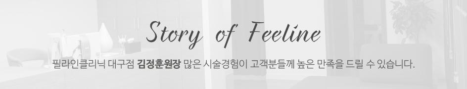 feelinestory